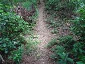 1040926 新竹新埔文山步道、犁頭山:DSC03796C.jpg