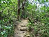 1041013 台北大安富陽自然生態公園、中埔山、福州山:DSC04097C.jpg