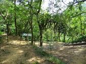 1041013 台北大安富陽自然生態公園、中埔山、福州山:DSC04089C.jpg
