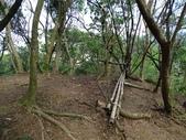 1041013 台北大安富陽自然生態公園、中埔山、福州山:DSC04100C.jpg