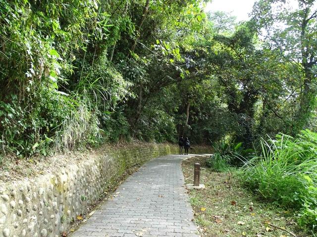 DSC07032C.jpg - 1051224 新竹寶山水庫環湖步道