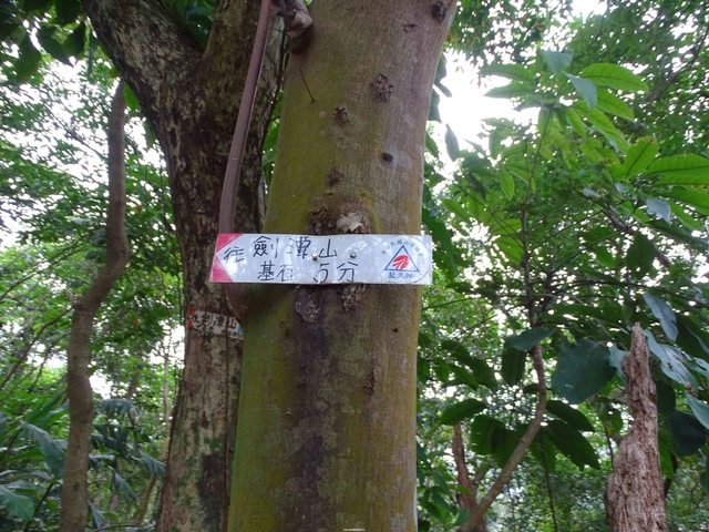 DSC00235C.jpg - 1070103 台北劍潭山步道