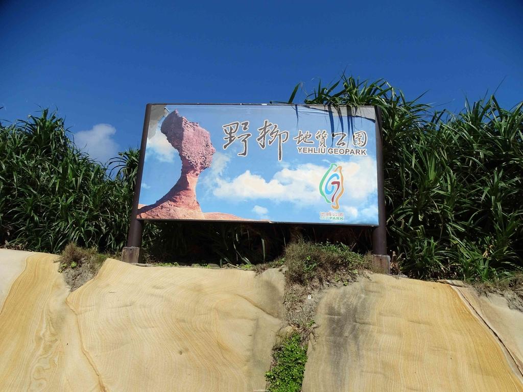 1050924 新北萬里野柳里登山步道、駱駝峰稜線步道:DSC08755C.jpg