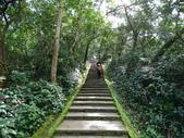 1070114 台北信義虎山自然步道:DSC00279C.jpg