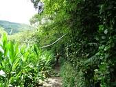 1060529 新北烏來馬岸古圳步道、溪瀧步道、福山國小:DSC02441C.jpg