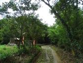 1070428 桃園楊梅保甲古道、東森山林步道:DSC08437C.jpg