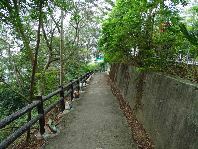 DSC05498C.jpg - 1051119 桃園蘆竹五酒桶山步道