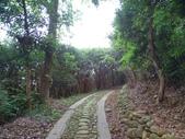 1070428 桃園楊梅保甲古道、東森山林步道:DSC08453C.jpg