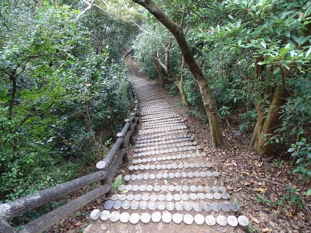 DSC05512C.jpg - 1051119 桃園蘆竹五酒桶山步道