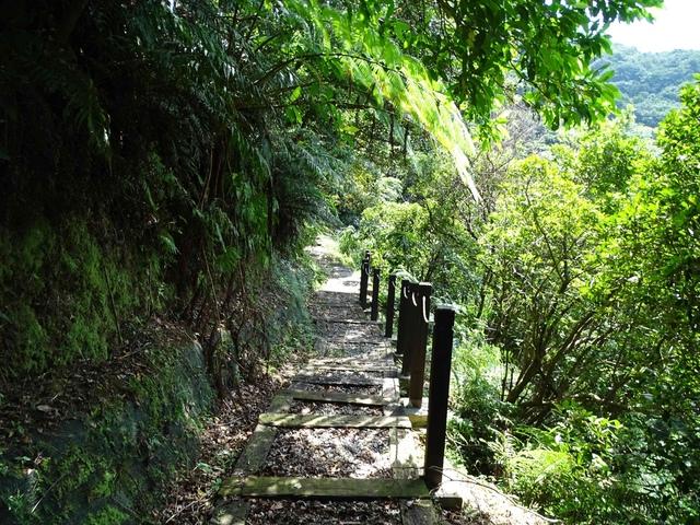 DSC08508C.jpg - 1050924 新北萬里野柳里登山步道、駱駝峰稜線步道