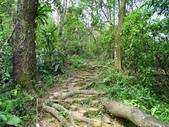 1041013 台北大安富陽自然生態公園、中埔山、福州山:DSC04105C.jpg
