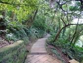1070114 台北信義虎山自然步道:DSC00313C.jpg