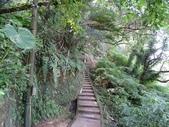 1070114 台北信義虎山自然步道:DSC00315C.jpg
