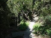 1021019 新竹新埔九芎湖步道、九芎湖山:DSC08173C.jpg