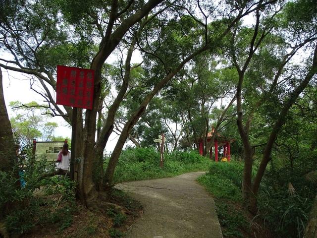 DSC05342C.jpg - 1051119 桃園蘆竹五酒桶山步道