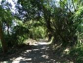 1040912 台北士林天母水管路步道、翠峰步道:DSC03414C.jpg