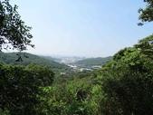 1040919 桃園龜山大坑桐花步道、陳厝坑山:DSC03564C.jpg