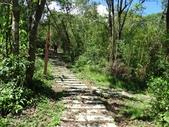 1041003 基隆七堵大牛稠登山步道:DSC03932C.jpg
