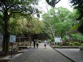 1051022 桃園虎頭山公園步道、虎頭山南峰、虎頭山:DSC09800C.jpg