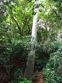 1040926 新竹新埔文山步道、犁頭山:DSC03797C.jpg