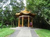 1051022 桃園虎頭山公園步道、虎頭山南峰、虎頭山:DSC09821C.jpg