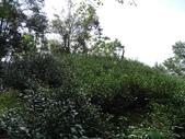 1041107 新北石碇粗坑崙山(橫坪山):DSC05698C.jpg