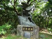 1051022 桃園虎頭山公園步道、虎頭山南峰、虎頭山:DSC09835C.jpg