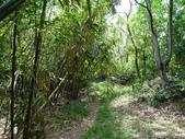 1040926 新竹新埔文山步道、犁頭山:DSC03755C.jpg