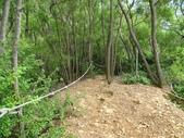 1040926 新竹新埔文山步道、犁頭山:DSC03788C.jpg