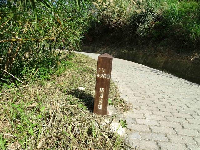 DSC07158C.jpg - 1051224 新竹寶山水庫環湖步道