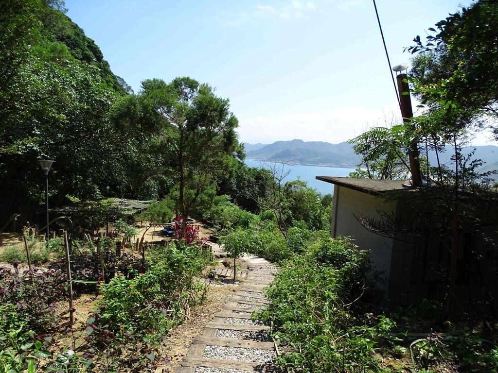 1050924 新北萬里野柳里登山步道、駱駝峰稜線步道:DSC08521C.jpg