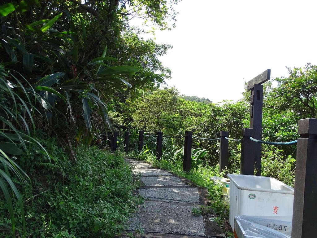 1050924 新北萬里野柳里登山步道、駱駝峰稜線步道:DSC08494C.jpg