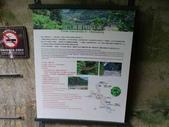 1050514 花蓮太魯閣小錐麓步道、砂卡礑步道:DSC03978C.jpg
