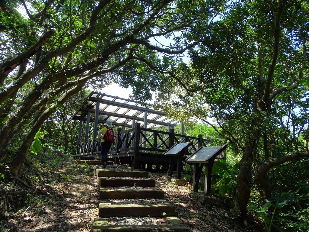 1050924 新北萬里野柳里登山步道、駱駝峰稜線步道:DSC08501C.jpg