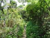 1040801 基隆市金龍湖湖濱步道.樂利山:DSC03104C.jpg