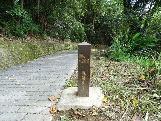 DSC07033C.jpg - 1051224 新竹寶山水庫環湖步道