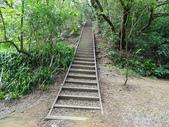 1041013 台北大安富陽自然生態公園、中埔山、福州山:DSC04092C.jpg