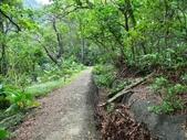 1041013 台北大安富陽自然生態公園、中埔山、福州山:DSC04103C.jpg