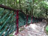 1040608 台北文山茶香環狀步道:DSC01450C.jpg