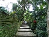 1070114 台北信義虎山自然步道:DSC00274C.jpg
