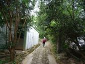 1070428 桃園楊梅保甲古道、東森山林步道:DSC08404C.jpg