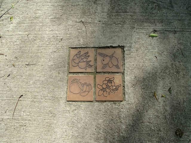 DSC07076C.jpg - 1051224 新竹寶山水庫環湖步道