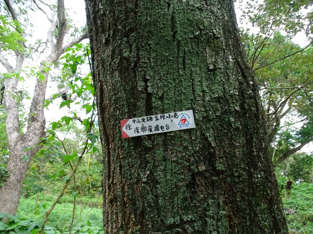 DSC00202C.jpg - 1070103 台北劍潭山步道