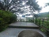 1050514 花蓮太魯閣台地步道:DSC04188C.jpg