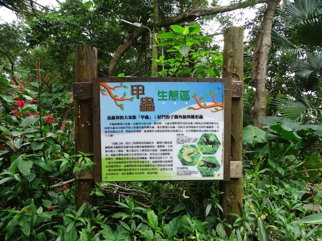 DSC00227C.jpg - 1070103 台北劍潭山步道