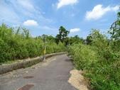 1040905 台北士林狗殷勤古道((尾崙古圳步道):DSC03206C.jpg