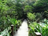 1041013 台北大安富陽自然生態公園、中埔山、福州山:DSC04081C.jpg