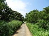 1040919 桃園龜山大坑桐花步道、陳厝坑山:DSC03521C.jpg