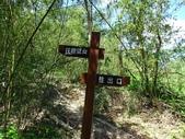 1041003 基隆七堵大牛稠登山步道:DSC03926C.jpg