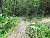 1041013 台北大安富陽自然生態公園、中埔山、福州山:DSC04104C.jpg